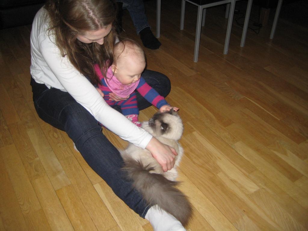 Framme hos Gabbie och Gizzmo. Elise var fascinerad, även om katten var lite mer åt det skeptiska hållet.
