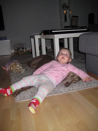 Vi har en tålig hund. Elise vill gärna vara nära. Ibland lite för nära, kan jag tycka, men inte Undra!