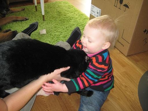 Lyckan att få hålla i en katt!
